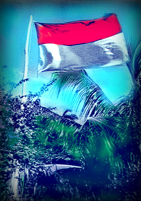 drapeau color